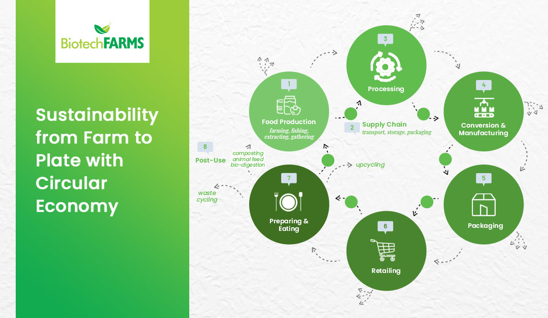 Sustainability from Farm to Plate with Circular Economy